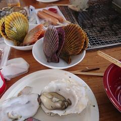 牡蠣/牡蠣小屋/冬 今年初の牡蠣小屋✨😍 美味しかった~💓💓