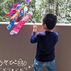 おうち遊び/おうち時間/折り紙/こいのぼり/こどもの日 本日、母はマスク作りday。 ミシンやア…(2枚目)