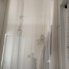 冷気カット/ホワイトインテリア/レースカーテン/突っ張り棒/カーテン/玄関ホール/... 我が家の寒さ対策。 玄関ホールとリビング…(1枚目)