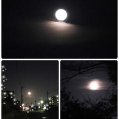 彩雲/満月/お正月2020 🐺Wolf Moon🌕  令和2年、初め…