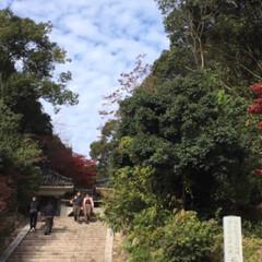 風景/ブルー お寺に行った時の、空と雲が綺麗だった✨✨…(1枚目)