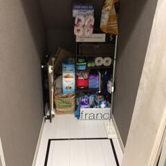 ゴミ箱/ゴミ箱収納/日用品/日用品収納/DIY/収納/... 階段下収納☆⋆*.。 ゴミ箱も隠して収納…