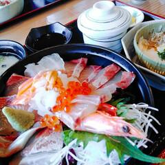 海鮮丼/グルメ/ぷりっぷり ナイスな海鮮丼☝ 身がぷりっぷりでしたー➰