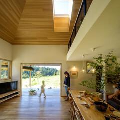 天窓/窓/トップライト/自然光/昼光/床面積/... 天窓のサイズって、どのように決めるものな…