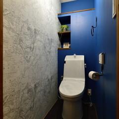 戸建て トイレ室内は深海を想像させるコバルトブル…