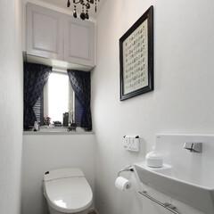 戸建て 白空間に、黒い繊細なシャンデリアをあわせ…