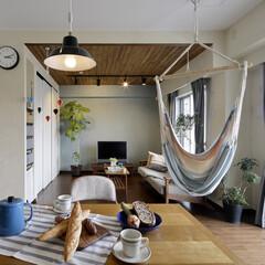マンション グリーンが爽やかな明るいLDです。隣室と…