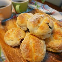 手ごねパン/テーブルロール/手作りパン 手ごねでテーブルロール  くるみレーズン…