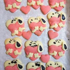 手作りおやつ/手作りクッキー おはようございます(*´∀`) 今日の息…(2枚目)