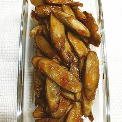 作り置きおかず/ごぼうレシピ ごぼうの甘辛バター醤油焼き  ごぼうのレ…