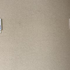 テサ パワーストリップ 高さ調節キャンバスフック | テサ  (ウォールフック)を使ったクチコミ「いつも画鋲を刺して紐で吊っていましたがこ…」(3枚目)