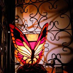 ステンドガラス/ライト/フォロー大歓迎/雑貨/インテリア/うちの子自慢 ステンドガラスの蝶のライト💡 夜になると…