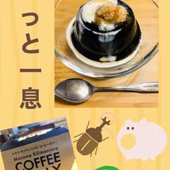 至福のひととき/kaldi/コーヒーゼリー 昨日はKALDIで久々に大好きなコーヒー…