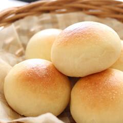 おうちごはん/手づくりパン/パン/朝食/パン好き/パン焼きました/... シンプルな丸パンにハマっています。 小麦…