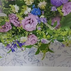 花風水カレンダー(8月) 花風水カレンダー(8月)💜   今日から…(1枚目)