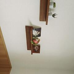 ニトリ ニトリセール品で壁飾り