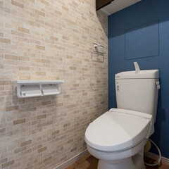 トイレ/内装/壁/床/テラコッタ調/レンガ調/... トイレのリフォームでは 壁と床にこだわり…