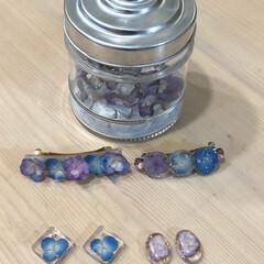 ピアス/バレッタ/紫陽花でアクセサリー作り 初の紫陽花のドライで レジンをやってみま…