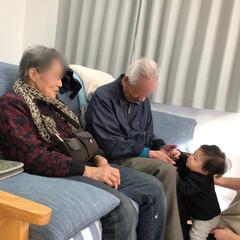 ひ孫/孫/収穫の秋/柿/フォロー大歓迎 2年前に免許証を返納した父80歳、🚗無く…