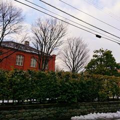 集まれ/募集中/写真同好会/雪/金沢/写真好き/... 昨日はゆきも降って気温も落ちてました.☃…