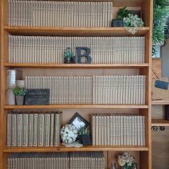 フェイクフラワー/フェイクグリーン/ペイント/100均雑貨/雑貨/DIY/...  本棚の雑貨を見直し😆 ごちゃごちゃして…