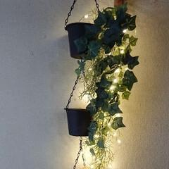 フェイクグリーン/フェイクグリーンアレンジ/クリスマスバージョン/ライトアップ/リミアの冬暮らし/ダイソー/... またまたおはようございます💦 連続投稿に…