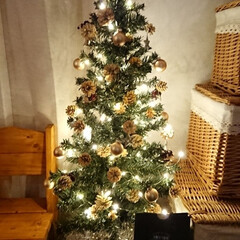 木の実ドライ/クリスマス2019/リミアの冬暮らし/ダイソー/セリア/100均/... おはようございます🙇 merry xma…