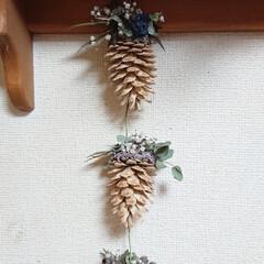 木の実リース/松ぼっくりリース/クリスマス2019/リミアの冬暮らし/DIY/雑貨/... おはようございます🙋 松ぼっくり💖またま…(2枚目)