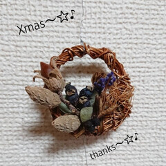 クリスマスオーナメント/クリスマスリース/作業部屋/キッチン/ハンドメイド/雑貨/... おはようございます🙇 6㎝のミニミニリー…
