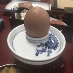朝ごはん/旅館/卵