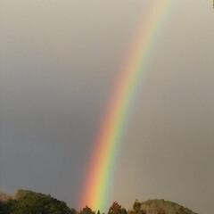 雨上がりの風景 2日間、ショボショボと降り続いた雨が上が…