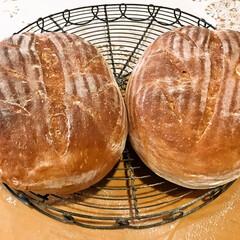 手作りパン/醗酵かご 醗酵かごを使ってパンを焼きました。 とっ…