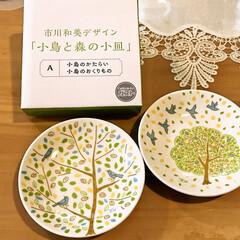 ガスト/小鳥と森の小皿 ガストのアプリクーポンで小皿がもらえまし…(1枚目)