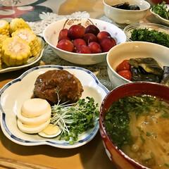 「なんでど平日なのに 家族全員家でお昼ご飯…」(1枚目)