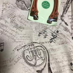 ヴァイオリンモチーフ/ホルンモチーフ/楽器柄/エコバック 去年9月くらいに購入したホルンモチーフの…(1枚目)