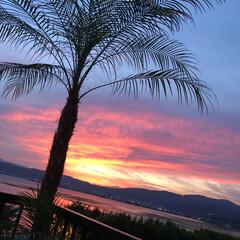諏訪湖/夕陽/sunset 諏訪湖とsunset🌞