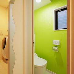 アーバン/LDK/トイレ/開放的/開放感/カラフル アクセントカラーを採用。楽しく使用できる…