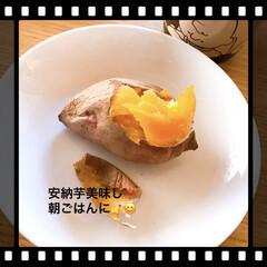 朝ごはん/安納芋 朝から安納芋美味し❣️ 蜜がたっぷり甘い…(1枚目)