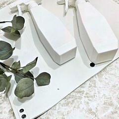 霧吹き 泡 2way 詰替 セット まとめ買い #SALE_TB | サラサデザイン(部屋用)を使ったクチコミ「サラサデザインのスプレーボトル♡ 泡.。…」