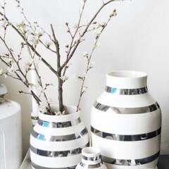 ケーラー Kahler オマジオ ベース Lサイズ 305mm シルバー(花瓶、花器)を使ったクチコミ「お気に入りは真ん中のサイズ♡ 形が可愛い…」(1枚目)