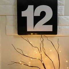 Salcar USB式 LEDイルミネーションライト 銅線ワイヤーライト 10m LED100 球 電飾 飾り付け フェアリーライト LEDストリングライト 祝日 結婚式 パ(その他キッチン、日用品、文具)を使ったクチコミ「休みになって、気がついたら もう4/12…」