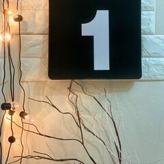 壁紙シート/壁紙リメイク/壁紙/モノトーンインテリア/モノトーン雑貨/モノトーン/... 万年カレンダー♡♡ 9/1.. あ꜆꜄꜆…