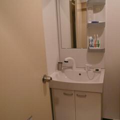 シャワー水栓タイプ ジャニス リフレスタンド