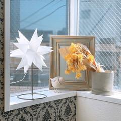 照明器具/オシャレ/ルームライト/Creema/インテリア 今日一瞬の晴れ間に窓を📸✨  ライトはC…