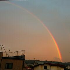 儚い/日の出/虹 日の出のあと 西の空に虹が🌈 数分で消え…