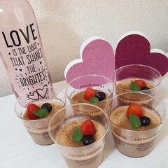 チョコスイーツ/バレンタイン/おしゃれカフェ/カフェ部/ミニチュアダックスフンド/おうちカフェ/... 💝HAPPY Valentine🍫💓  …