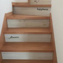 階段/100均/セリア