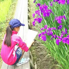 癒しスポット/散策/海が見える/お花/おでかけ/旅行/... 近場で楽しめる場所や、少し遠出をして景色…