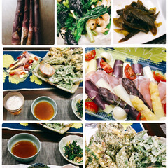 山菜/おうちごはん 春の山菜づくしの食卓。 畑で採れた紫アス…