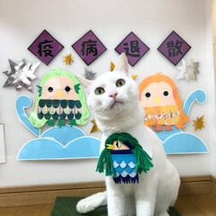白猫/ニーナ/アマビエ様にお願いするニャ!/アマビエ様/アマビエ/疫病退散 疫病退散ニャ~!!
